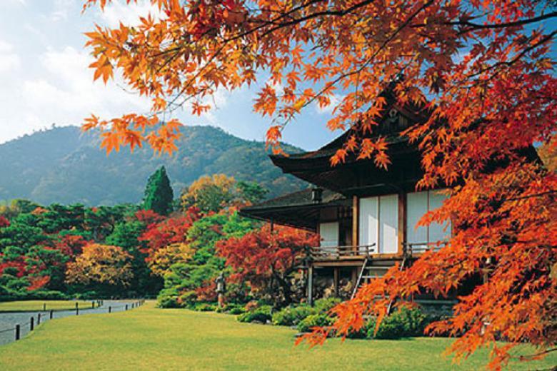 HCM - Osaka - Kyoto - Kobe 5N Bay Vietnam Airlines