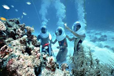 Tour Đi Bộ Dưới Đáy Biển Cù Lao Chàm 1 Ngày