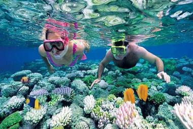 Landtour Phú Quốc 4N3Đ (Tham Quan Bắc, Nam Đảo & Câu Cá Lặn Ngắm San Hô)