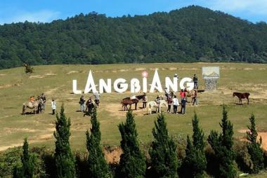 Tour Trekking Chinh Phục Đỉnh Langbiang 1 Ngày