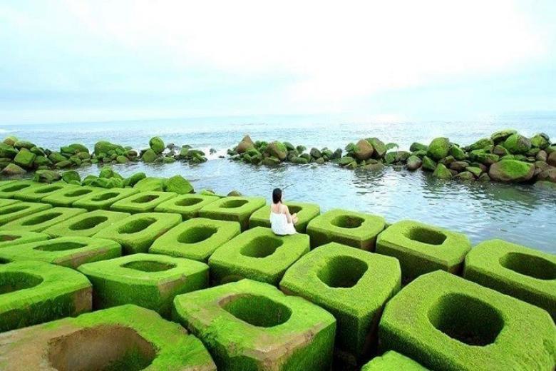 Tour Tuy Hòa - Bãi Môn - Vịnh Vũng Rô - Hải Đăng - Mũi Điện 1 ngày
