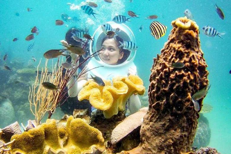 Tour Lặn Mũ Dưới Đáy Biển Nha Trang 1 Ngày