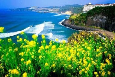 Nha Trang - Đảo Jeju 4N3Đ