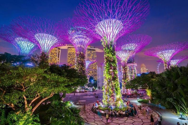 Vườn thực vật siêu cây khổng lồ Gardens By The Bay